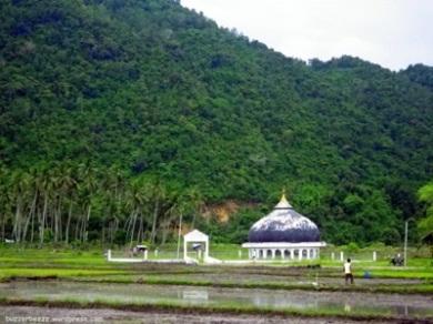 Kubah Masjid Al Tsunami di tengah persawahan