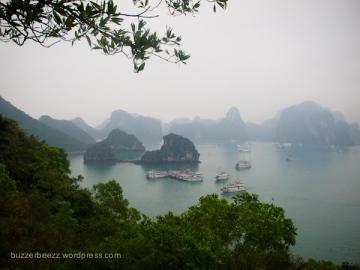 View dari puncak Dao Ti Top