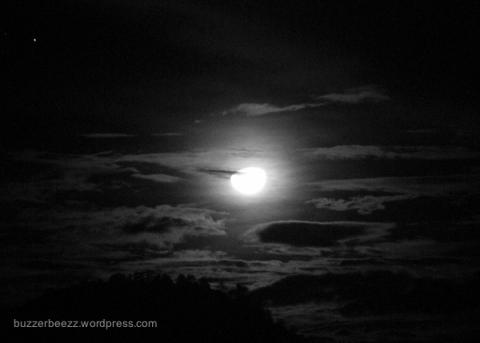 Bulan malam itu, magis.