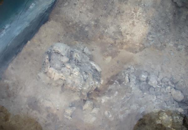 Kerangka manusia purba di Binangun