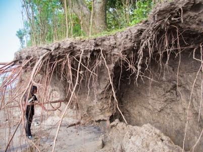 Lapisan tanah setinggi 3 meter di pinggir pantai (situs leran)