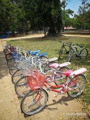 Sepeda yang bisa disewa di Candi Muaro Jambi